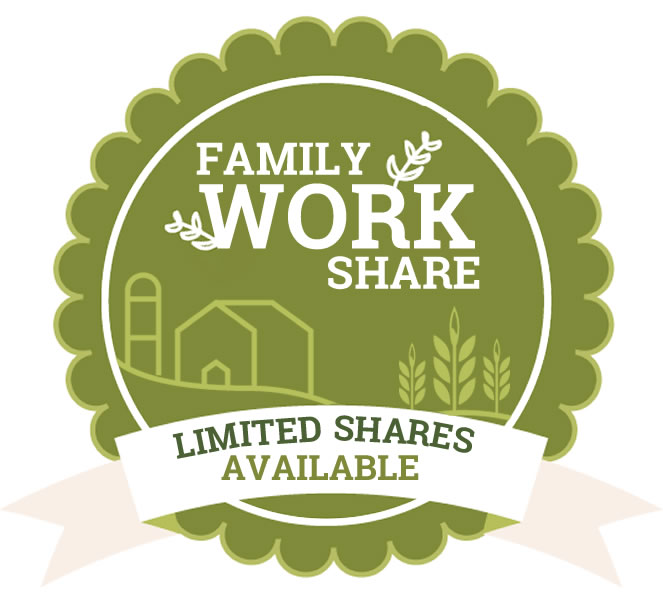 csa family work share